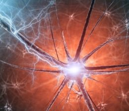 1er anniversaire de l'unité de neuromodulation – stimulation cérébrale du CHM